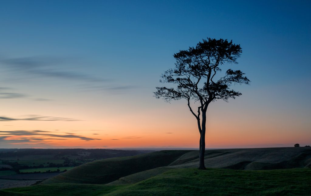 Sunset at Roundway Hill Summit, Wiltshire