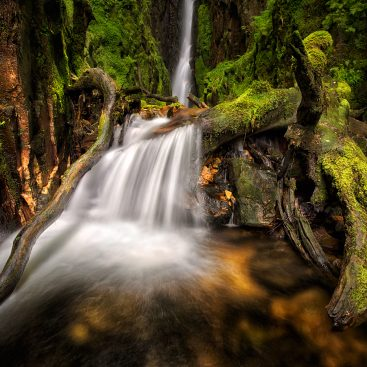 Scale Force Falls. Lake District