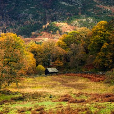 Glencoyne, Ullswater- Lake District
