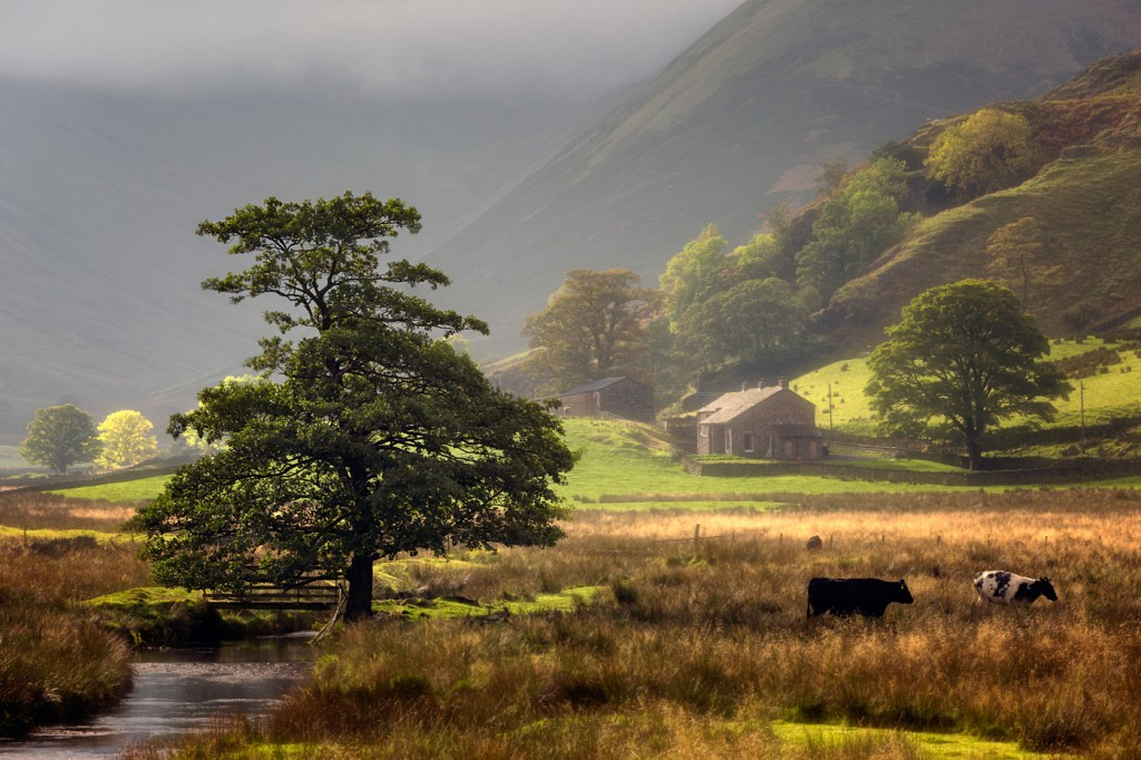 Martindale Common, Lake District
