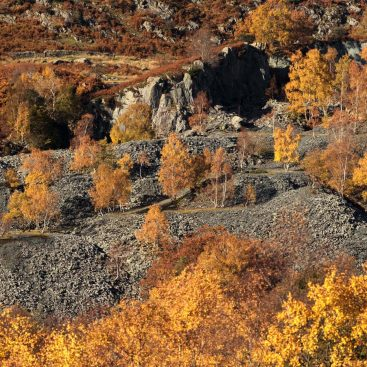 Autumn's Fiery Colours, Hodge Close Quarry, Lake District