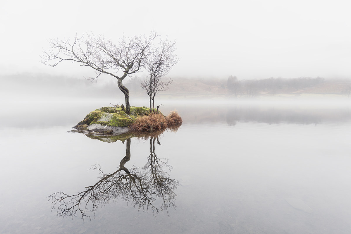 Tree Island, Rydal Water, Lake District