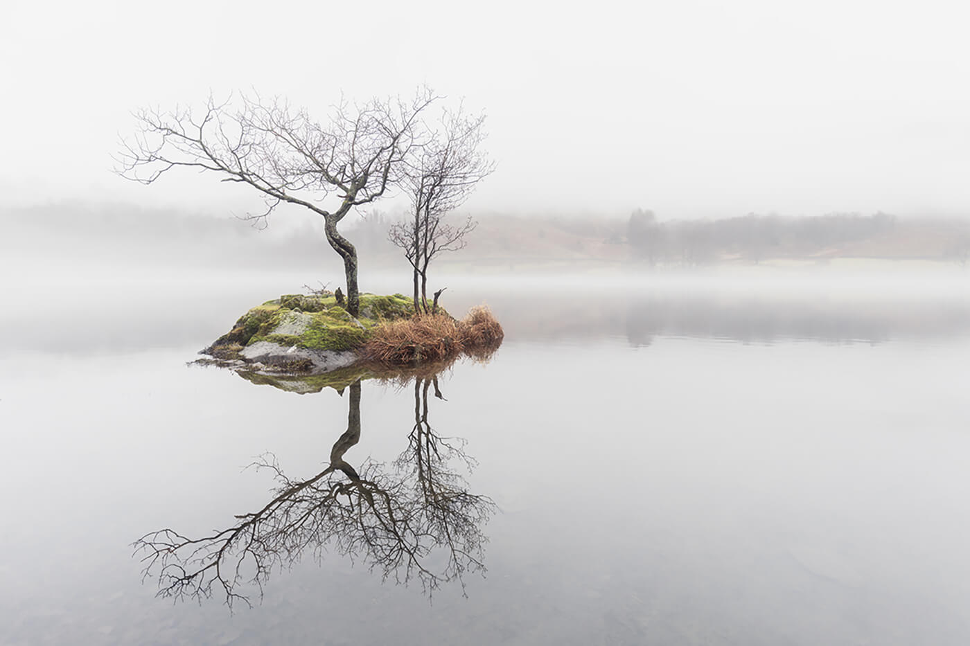 Lone Tree Island, Rydal Water, Lake District
