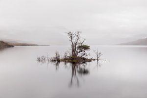 Tree Island, Loch Assynt, Assynt, Scotland