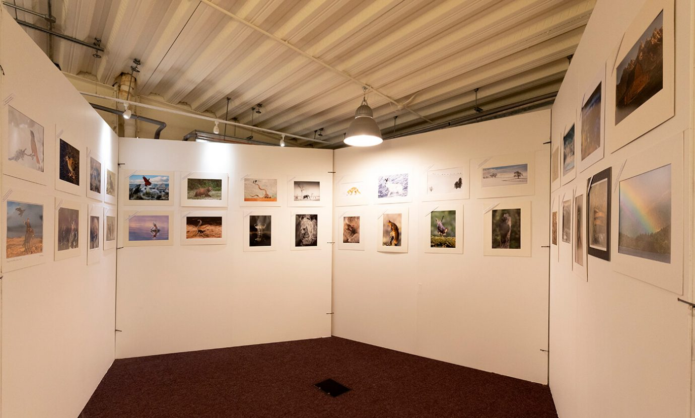 Camera club prints on show - The Northern Photography and Video Show 2018