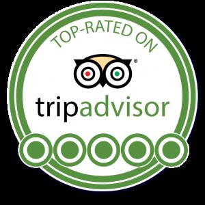 100 Reviews Milestone on TripAdvisor