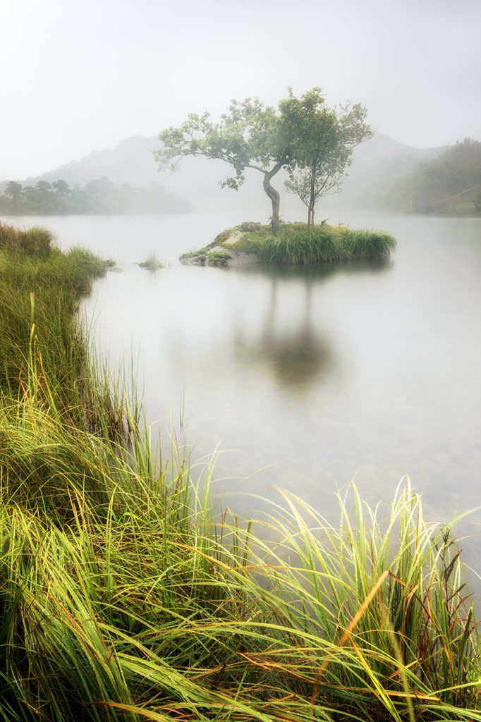Isolated, Rydal Water, Lake District