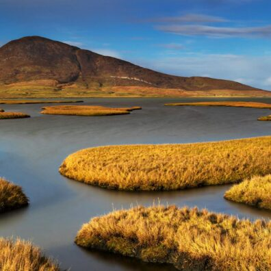Salt Marshes, Northton, Isle of Harris, Outer Hebrides