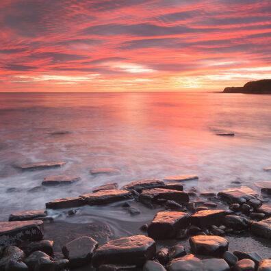 Kimmeridge, Dorset, Tony Higginson