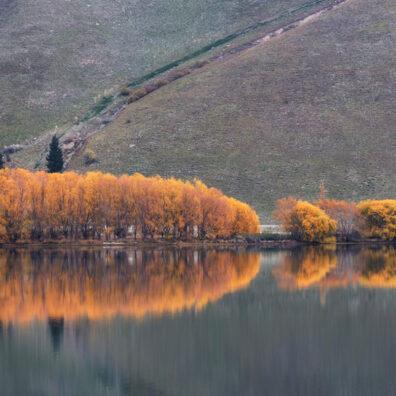 Lake Dunstan, Cromwell, New Zealand