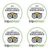 Tripadvisor 2016, 2017, 2018, 2019 Certificate of Excellence
