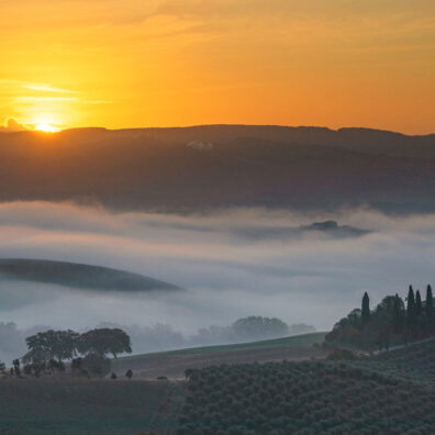 Misty Sunrise, Belvedere, San Quirico d'Orcia, Tuscany, Italy