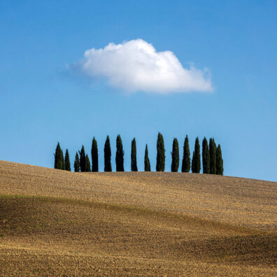 Lonely Cloud Over a Copse of Trees, San Quirico d'Orcia, Tuscany, Italy