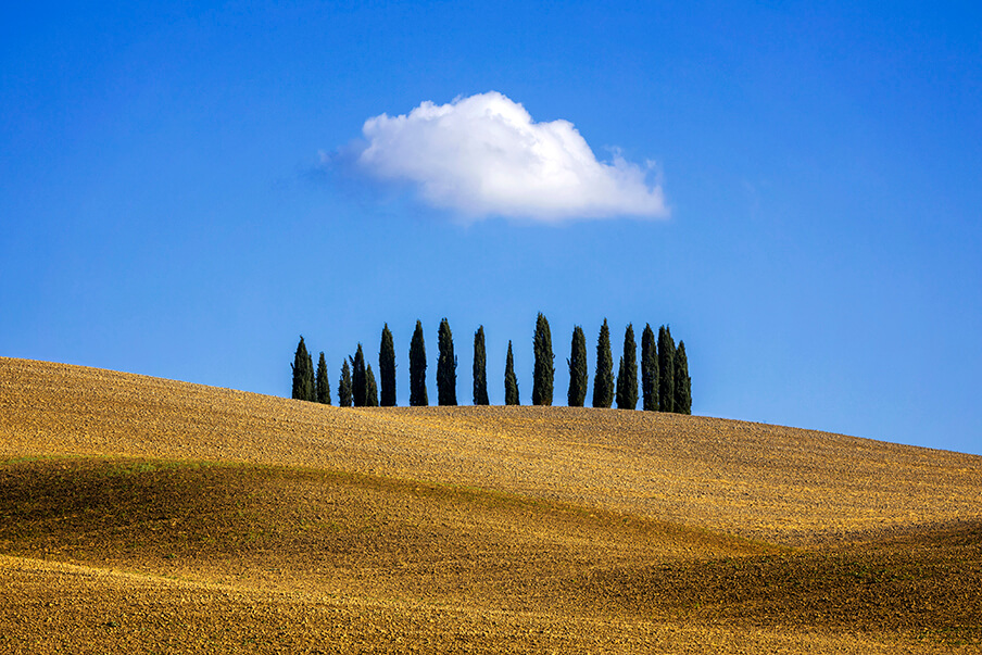 Lonely Cloud Over a Copse of Trees, San Quirico d'Orcia, Tuscany. Italy photography workshops