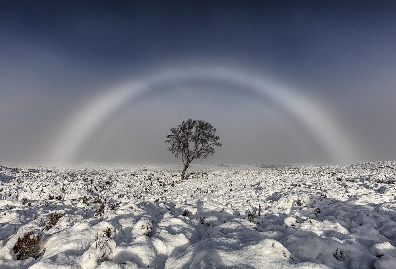 Fogbow, Rannoch Moor, Scotland