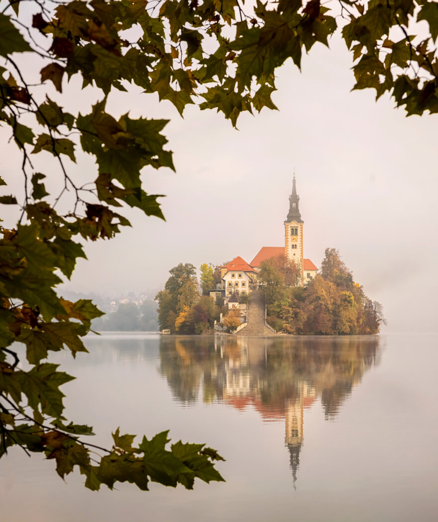 Lake Bled framed by a tree, Slovenia.