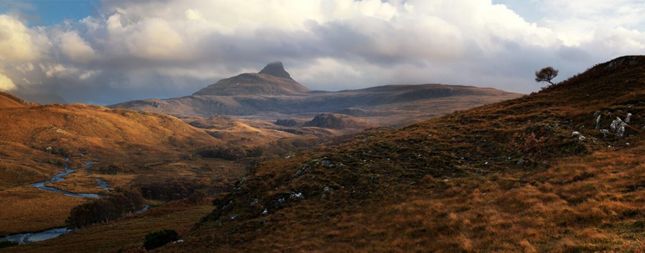 Stac Pollaidh and the Lone Tree, Assynt, Scotland